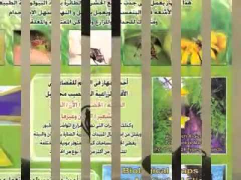 شركة مكافحة حشرات بالرياض (( 0552020037 )) مؤسسة ركن المعالم