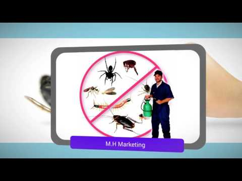 افضل شركة مكافحة حشرات بالرياض- بيرم كلين 0550575548