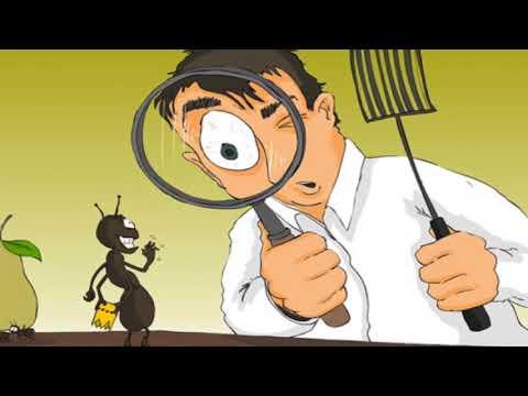 أفضل شركة مكافحة حشرات بالرياض -0533393243-